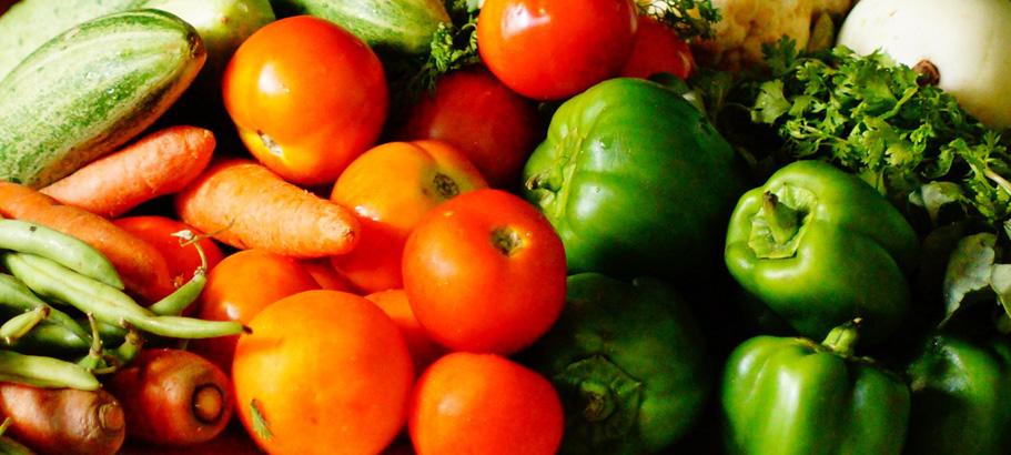 Fresh-Garden-Harvest-Vegetables-Growing-Inspired