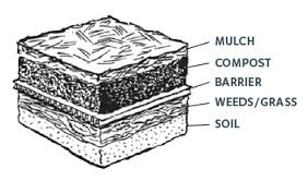 Sheet mulch layers